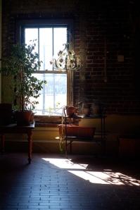 sun-shines-thru-window