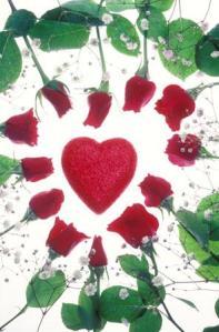 heart_rose