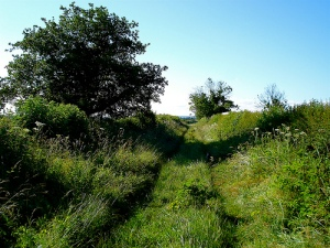 countrypath1