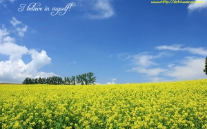 Hokkaido_summer_field_picture_13652023_3460940 copy