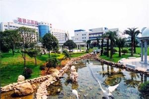 Công viên trong bệnh viện trường