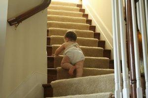babyclimbingupstairs