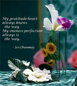 my-gratitude-heart