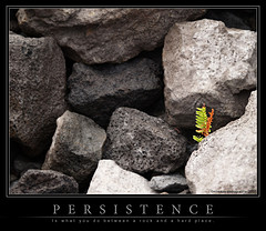persistence1