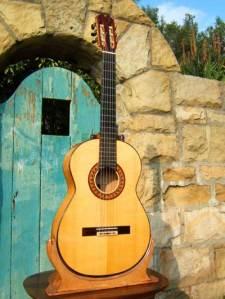 bruce_wood_flamenco