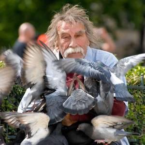 Ông già và chim bồ câu :-)