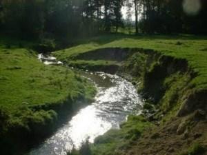 rivercliff1
