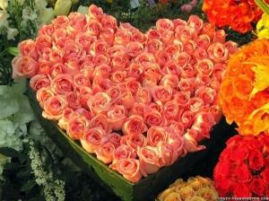 roses-valentine-