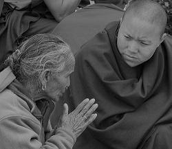 Truyện Thiền Đối Thoại - Page 6 Monkandoldlady