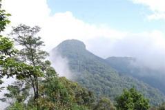 Núi Tản Viên-Hà nội qua thơ.  Pleiku phố núi và bạn bè