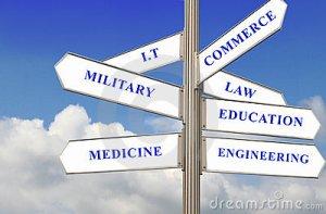 seven-career-path