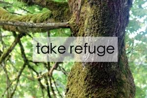 TakeRefuge