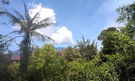 Trời xanh mây trắng.. tại nhà anh Thảo
