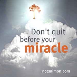 dontqquitmiracle