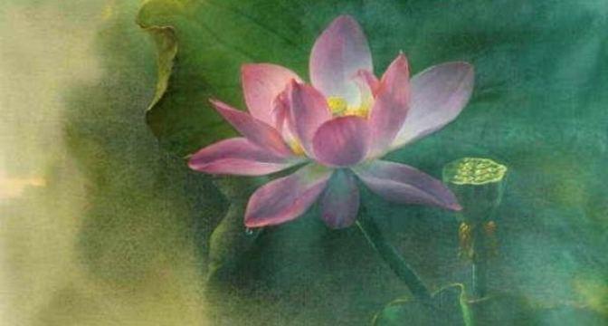 Dạy kiểu hà tiện — 101 Truyện Thiền Slideshows