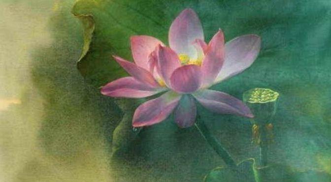 Lời khuyên của mẹ – 101 Truyện Thiền Slideshows