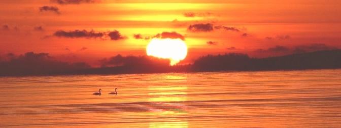 Ánh sáng và Đại dương