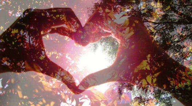 Yêu bằng trái tim