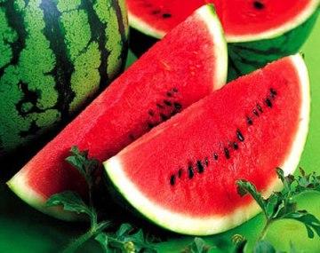 watermelon-3108e