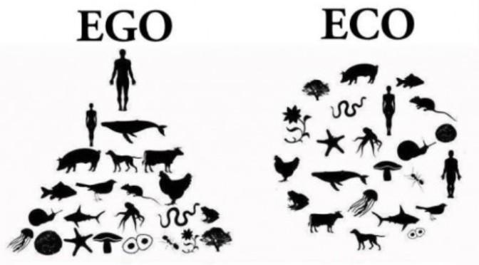 Bình đẳng là chúng ta đều giống nhau