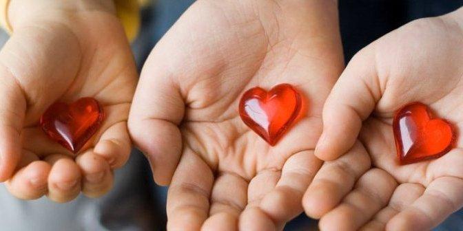 Làm sao để giáo dục trái tim hòa bình và nhân ái