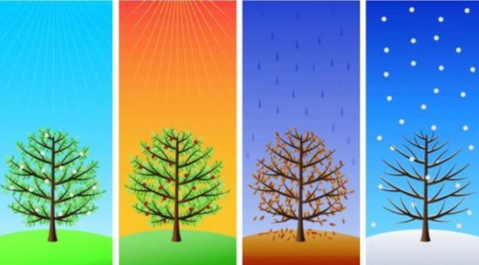 Bốn mùa đều đẹp