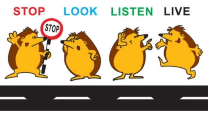 Dừng lại, nhìn và lắng nghe – Stop, look and listen