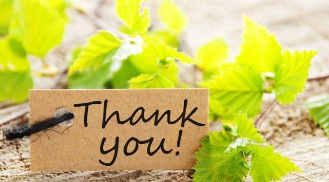 Tạ ơn người làm đẹp cuộc đời