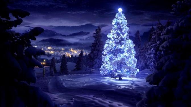 Cây Giáng Sinh trên thế giới