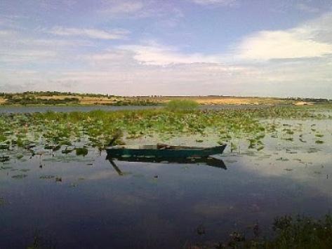 Bàu Sen - huyện Lệ Thủy