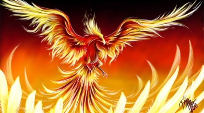 The Phoenix – Phượng hoàng