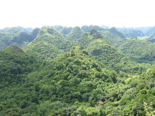 Vườn quốc gia Cát Bà, Quảng Ninh.