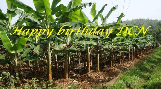 Mừng sinh nhật 6 tuổi của Đọt Chuối Non