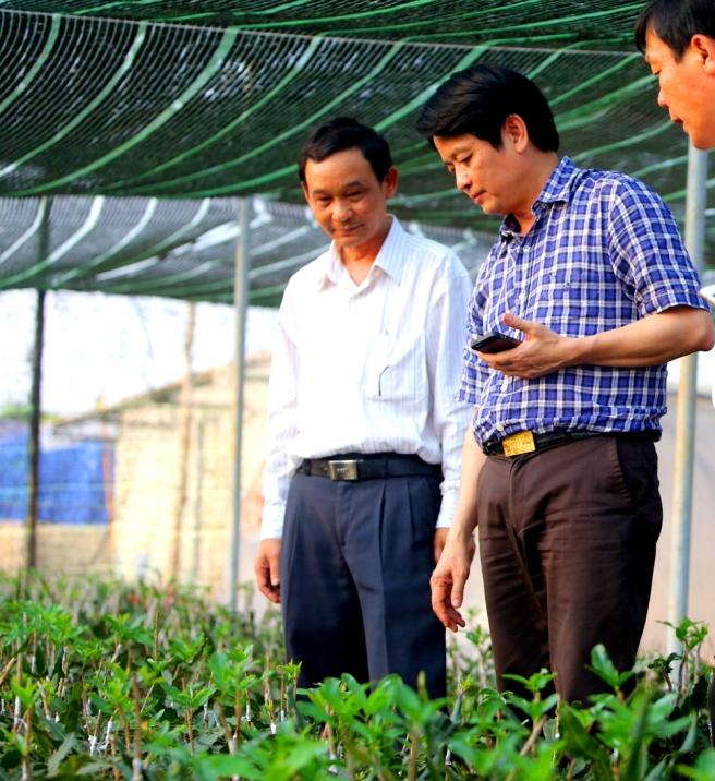 Ông Hưởng ( áo xanh) trong vườn mắc ca thực sinh vừa ghép