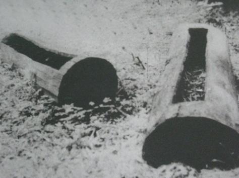 Quan tài của người Chu Ru được làm từ thân cây đục rỗng.