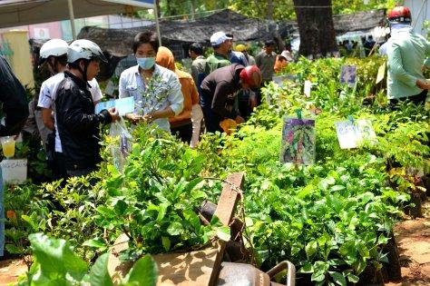 Nông dân mua các giống cà phê cao sản mới tại lễ hội cà phê