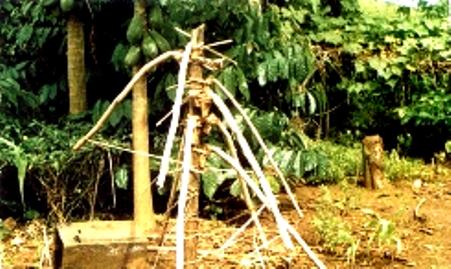 Chà gạc (yoas) là dụng cụ để chặt cây, phát rẫy của người Cơ Ho. Cán chà gạc được làm bằng một đoạn gốc tre già và phía gốc, chỗ tra lưỡi dao được uốn cong khá cầu kỳ. Người ta uốn một lúc nhiều cán chà gạc trên một chiếc cột như thấy trong ảnh.