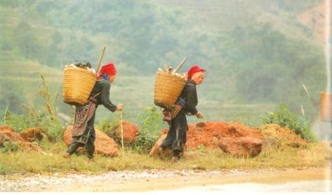 Người Dao ở Lào Cai.