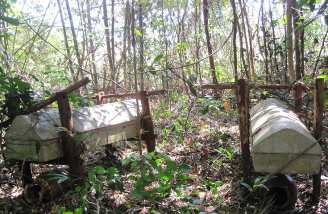 Tục táng treo của người Gié Triêng không còn nhưng người dân không dám đặt chân tới đây vì sợ bị ma bắt.