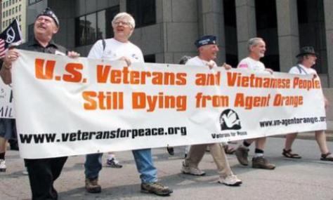 lúa veterans