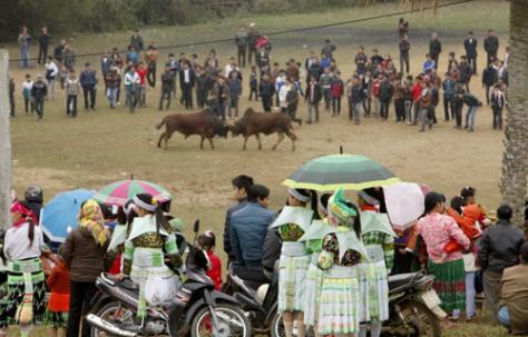 Các dân tộc Mông, Mường,Tày… trong những bộ trang phục truyền thống sặc sỡ màu sắc…về xem hội thi.