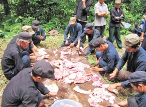 Cúng xong, dân làng tiến hành chặt thịt để nấu ăn ngay tại rừng.