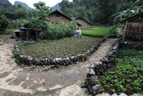 Từng con ngõ, mỗi vườn nhà của người dân Phia Chang, Đỏ Cọ đều hiện hữu những hàng rào đá xếp.
