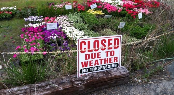 Đóng cửa vì thời tiết – Closed due to weather