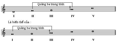 taoi6