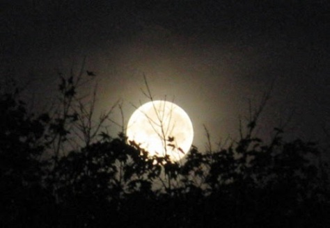 Đêm hội Cầu Trăng kết thúc khi mẹ trăng lên đứng giữa đỉnh đầu.