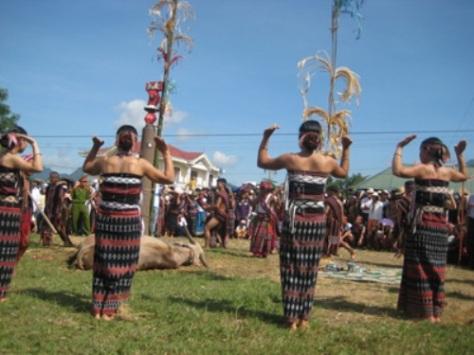 Nếu không được mùa, người Tà Ôi sẽ tổ chức lễ hội đâm trâu.