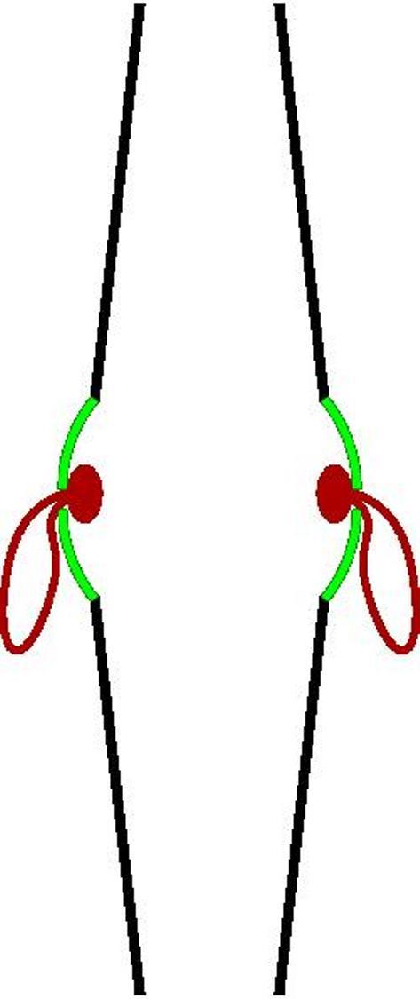Hình vẽ mô tả cấu tạo với phần màu xanh lá cây là chuông tạo ra âm thanh.