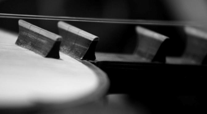 Nhạc cụ cổ truyền VN – Đàn Nguyệt
