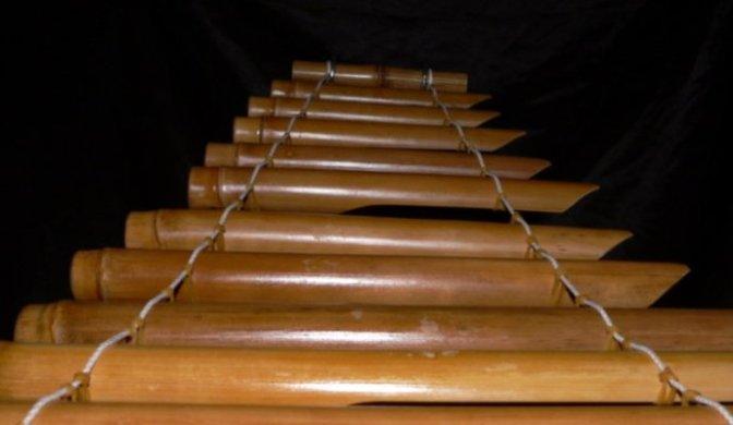 Nhạc cụ cổ truyền VN – Đàn T'rưng